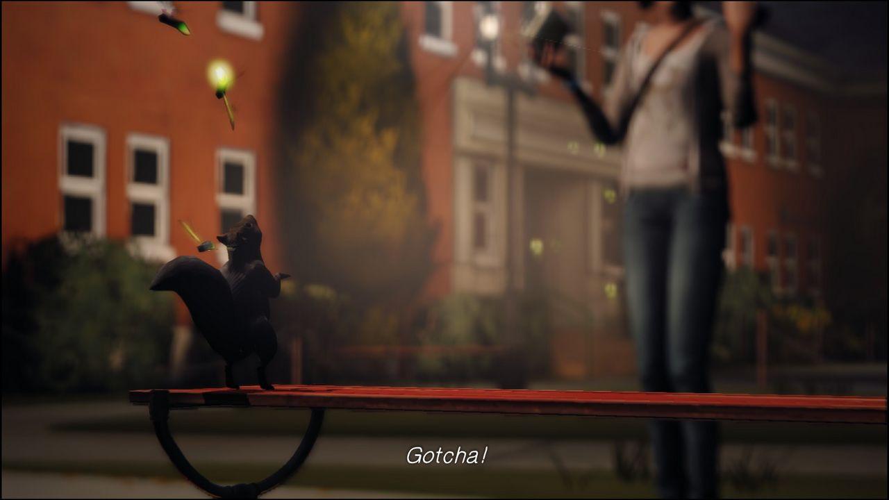 белка на лавке из второго эпизода